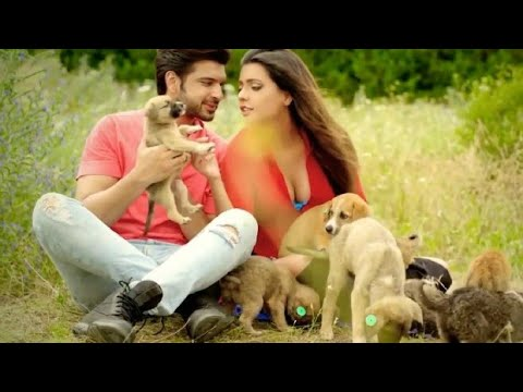 Chale Aao Pass Mere Thoda Aur Whatsapp Status 💗Love💖 Romantic💏 Song By All Type Bollywood Status
