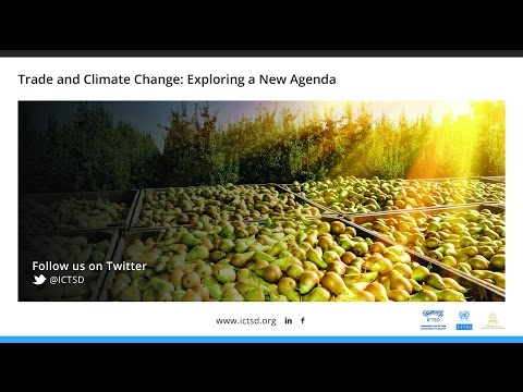 Trade and Climate Change: Exploring a New Agenda