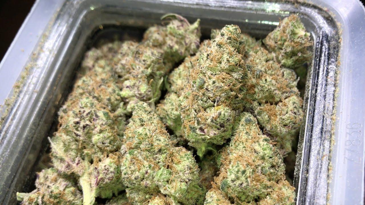 Colorado's BEST LEGAL MARIJUANA dispensary!