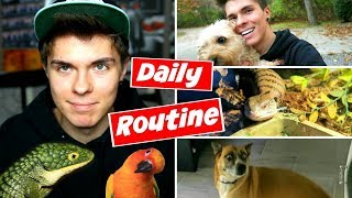 Download Daily Pet Care Routine! (Reptiles, Birds, + More!) Mp3 and Videos