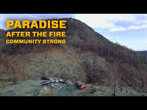 Paradise After the Fire