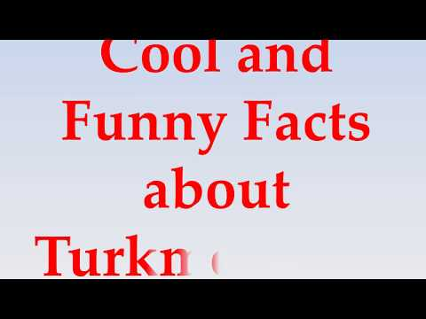 Cool and Funny Facts about Turkmenistan