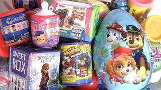 The Ugglys Pet Shop Paw Patrol Baby Bottle  Puppy dog Pals Frozen