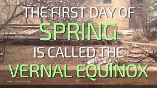 Time Lapse Tuesday: Hello Spring!