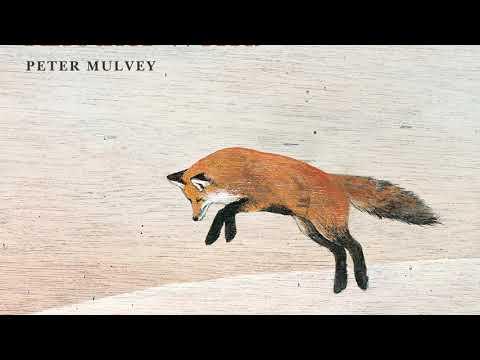Peter Mulvey: Fool's Errand Mp3