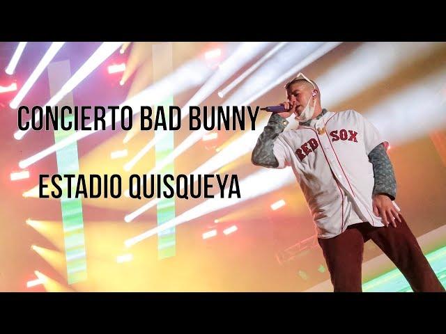 Bad Bunny y todo lo que pasó en su concierto del Estadio Quisqueya