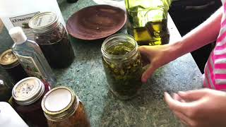 Part 2: How To Make Infused Oil With Fresh Or Dried Herbs/Overview Of Tinctures, Oils And Infusions