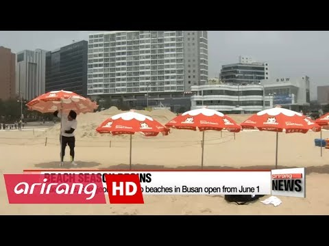 Beaches in Busan open for summer season