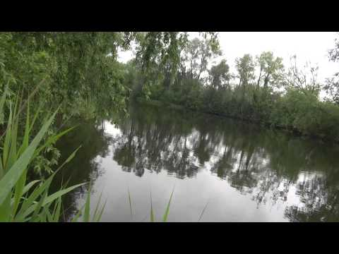 STOCK PIT, STANSTEAD ABBOTS, HERTFORDSHIRE, ANGLERS MAIL TACTICAL BRIEFINGS