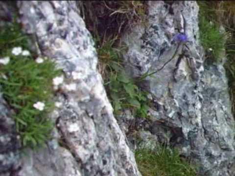 Klettersteig Gantrisch : Klettersteig gantrisch youtube
