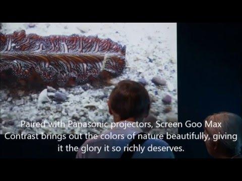 Lee Kong Chian Natural History Museum of Singapore using Screen Goo