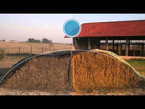 Good Practices for Silage Production