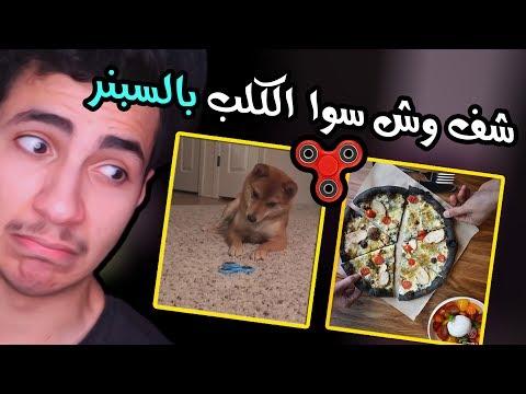 بيتزا بالفحم , حتى الكلب يكره السبنر (اخبار شاطحة)