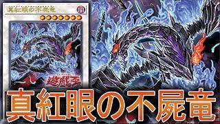 【遊戯王ADS】真紅眼の不屍竜【YGOPRO】 thumbnail