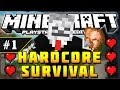 Minecraft PS3 - Hardcore Survival - Part 1 - NO DIEING HERE! ( PS3 )