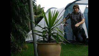 The evil tent (time lapse)