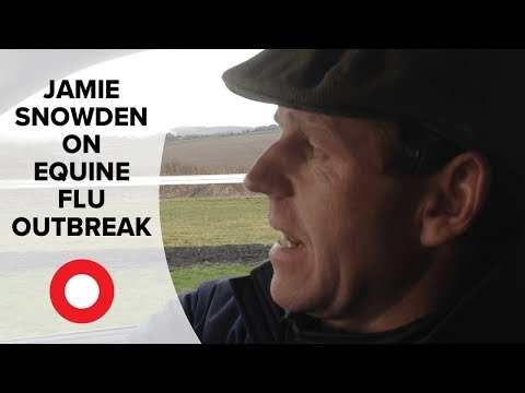 Business as usual for Jamie Snowden despite equine flu outbreak