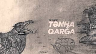 Baixar PRoMete — Tənha Qarğa (Audio)