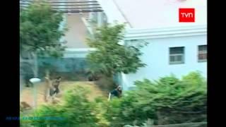 Momentos Históricos: Operación Chavin de Huantar
