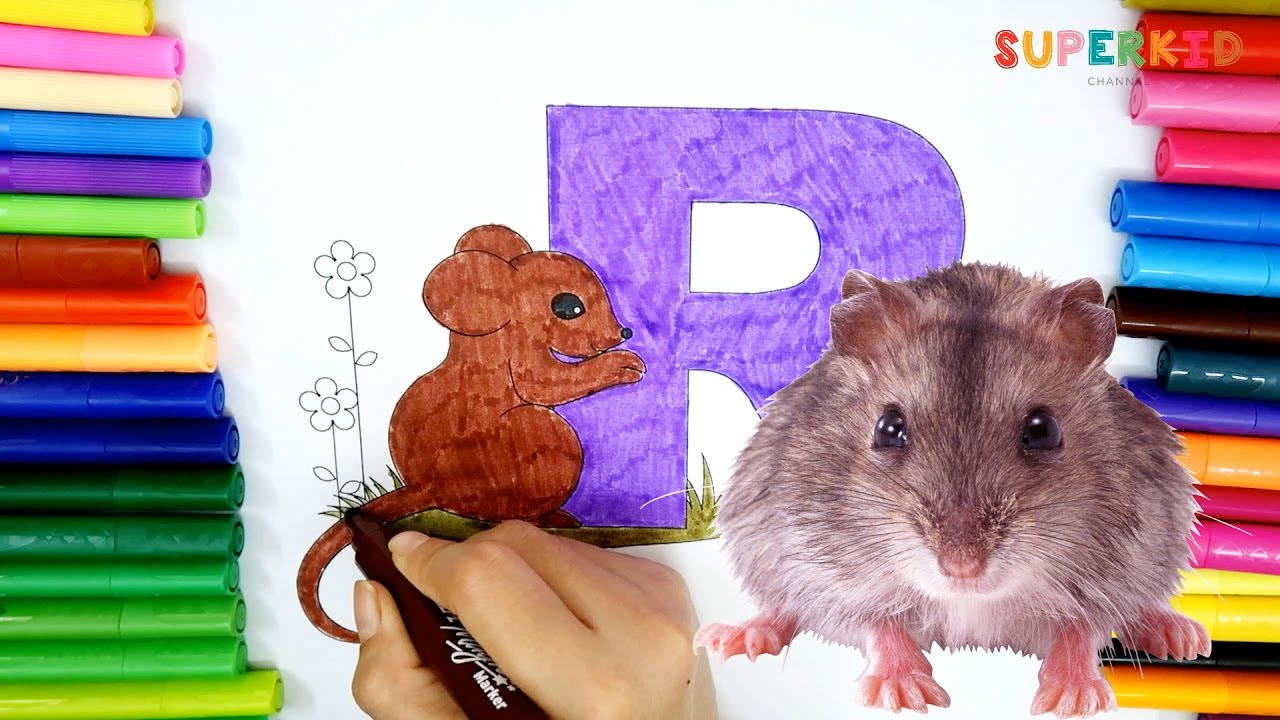 Letter R For Rat Coloring Pages