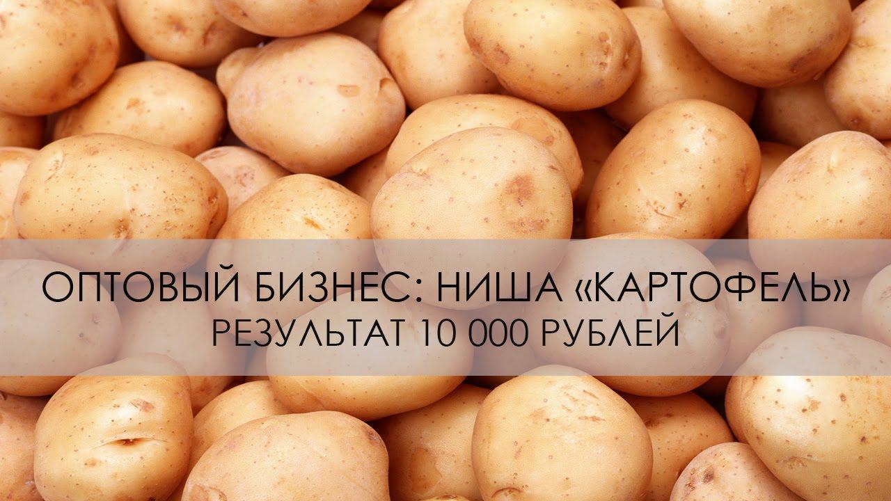 Перепродажа картофеля бизнес план бизнес планы медицинских учреждений