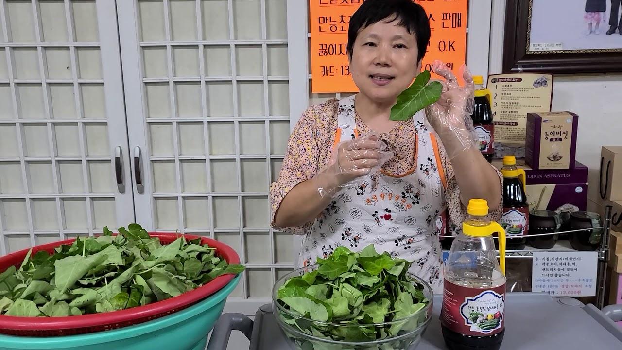 박주가리잎 장아찌 간단하게 담는법.정력 조루 발기부전과 약골을 강골로 만들자.허리통증