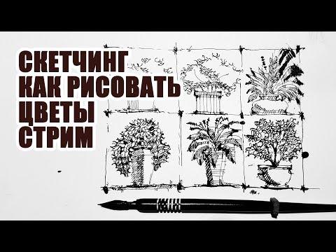 Скетчинг - Как Рисовать Растения, цветы