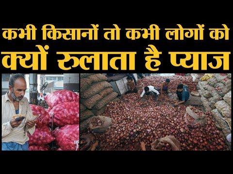 Onion price rise के कारण क्या है? Modi government ने सस्ते प्याज के लिए क्या कदम उठाए हैं?