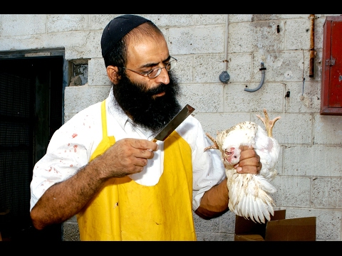 What is different about Lubavitch Shechita?