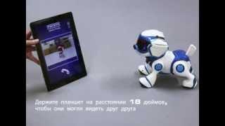 Teksta Instructions RUSSIAN