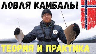 ЛОВЛЯ КАМБАЛЫ ТЕОРИЯ И ПРАКТИКА Рыбалка НОРВЕГИЯ Как ловить камбалу Способы ловли камбалы