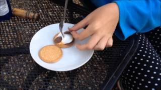 How To: Make S'mores-- Lauralaura