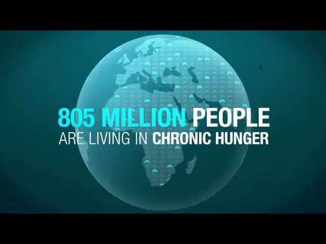 cronic hunger In politics, humanitarian aid, and social science, hunger is a condition in which a person, for a sustained period, is unable to eat sufficient food to meet basic nutritional needs.