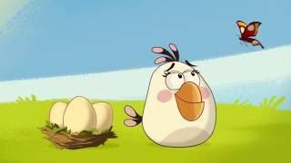 Злые птички Angry Birds Toons 1 сезон 43 серия Эффект бабочки все серии подряд