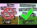 RARE Minecraft Commands!