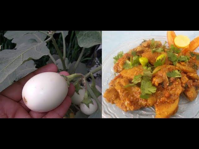 How To Cook White Egg Plant White Brinjal Recipe Youtube