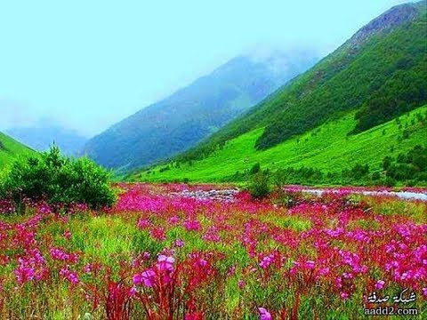 10 Most beautiful places in Northeast India