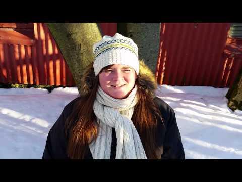 The I Heart Reykjavík Walking Tour