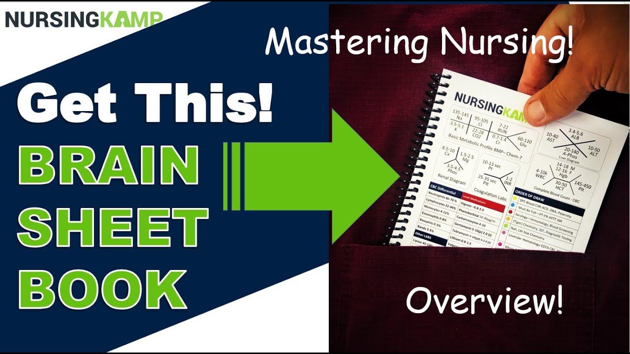 Brainsheet Book an Overview-Get This Book!!!!!