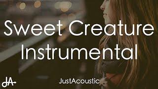 Sweet Creature - Harry Styles (Acoustic Instrumental)