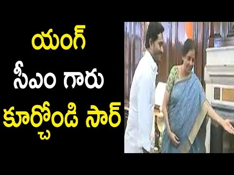 AP CM YS Jagan Meets Minister Of Finance Nirmala Sitharaman @ New Delhi Parliament | Cinema Politics