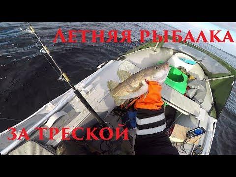 летняя рыбалка на щуку - 2017-06-20 13:30:02