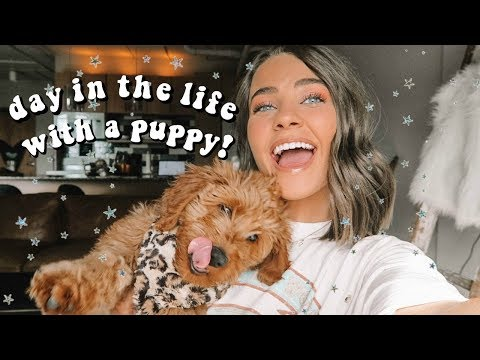 a day in my life with a puppy!!