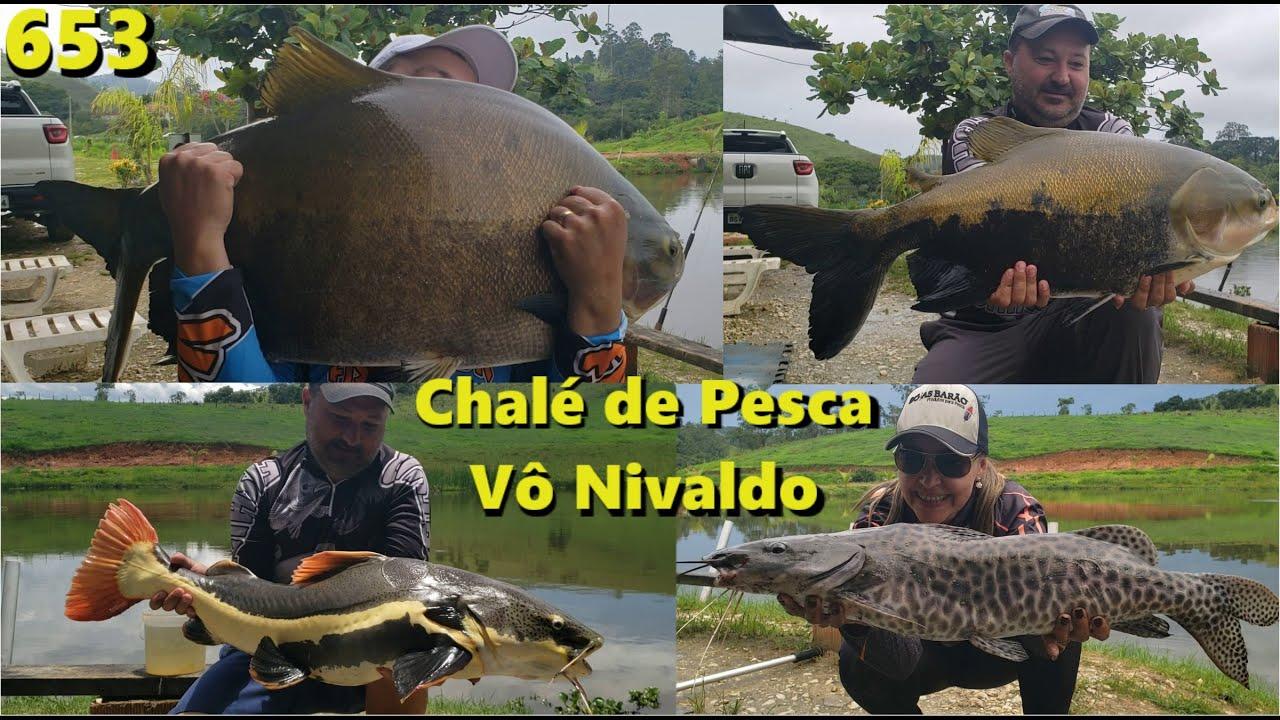Conheça o Chalé de Pesca VÔ NIVALDO em Taubaté com grandes peixes - Programa Fishingtur 653