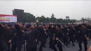 Meriahnya Yel-yel Korps Brimob Polri hingga Digotongnya Jajaran Humas Polri