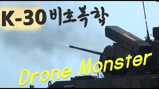 드론 잡는 괴물 K-30 비호복합 Drone Monster, K-30 Biho with Chiron missile, Korea