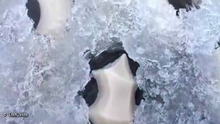 5 strange things found in frozen ice!!