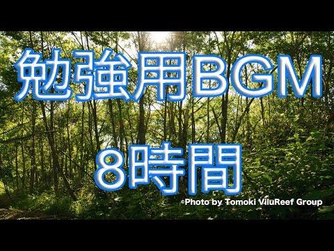 勉強用BGM】森の音8時間/自然環...