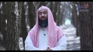 مشاهد3 / الحلقة الثالثة والعشرون (الدنيا) / الشيخ نبيل العوضي