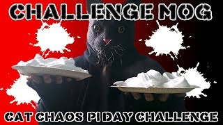 Cat Chaos' Pi Day Challenge